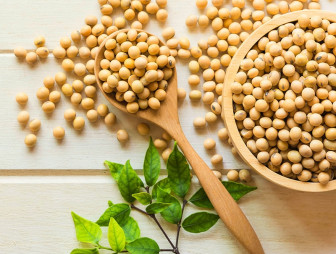 637042206021571610seeds soy bean plantbased [800x800]